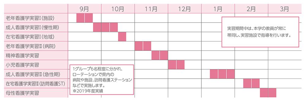 3年次の臨地実習スケジュール例の図
