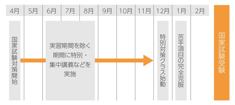 国家試験受験に向けた4年次のスケジュール図