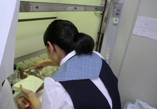 吉田高等学校理数科の課題研究の受入れを実施